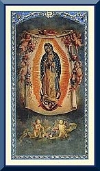 Prayer for Helpless Unborn - Guadalupe Holy Card