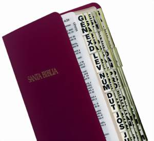 Spanish Bible Tabs - Large Print Bible Tabs - Bible Accessories