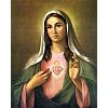Immaculate Heart Poster Print